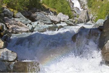 Schrecklicher Fund sorgt für Gewissheit: Vermisster Mann treibt tot in Fluss