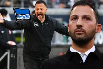 Trainerdiskussion bei Hertha BSC: Hat Tedesco abgesagt?