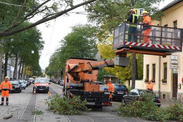 Sturmschäden an Leitungen: Weiterhin Stromausfall für 3000 Kunden