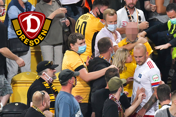 Dynamo leitet nach Beleidigung gegen Toni Leistner Ehrenratsverfahren ein!
