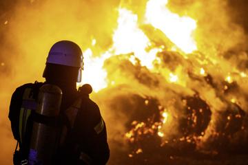 Großbrand: Feuerwehr auf Erdbeerfeld im Einsatz