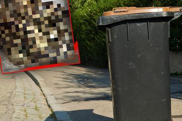Frau schiebt Mülltonne beiseite und bekommt Schreck ihres Lebens