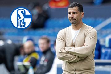 """Grammozis rechnet mit seinen Schalke-Versagern ab: """"Wir waren nicht konkurrenzfähig"""""""