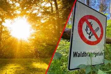 Erhöhte Waldbrandgefahr in Bayern: Behörden appellieren an Bevölkerung