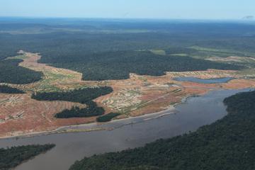 Erdüberlastungstag: Experten warnen vor Rebound-Effekt und Regenwald-Zerstörung