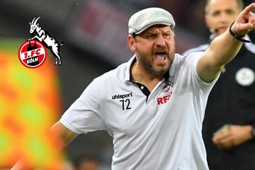 """Federal Chancellor Baumgart"": 1. FC Köln in crazy euphoria!"