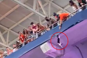 Un gato cae frente a la multitud aterrorizada del estadio: ¡lo que sucede a continuación es increíble!
