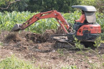 Mann lässt Brunnen in seinen Garten graben: Auf einmal ist er steinreich!