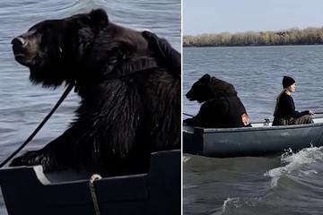 So geduldig: Was dieser Bär kann, bekommen selbst manche Menschen nicht hin