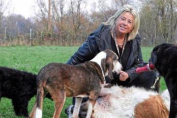 """""""Soll er doch hier verrecken!"""": Diese Frau schenkt im Sterben liegenden Hunden ein liebevolles Zuhause"""