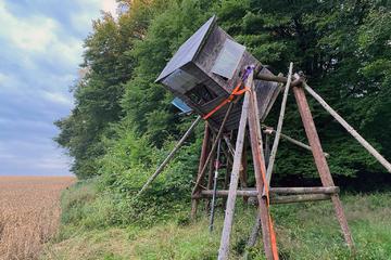 Rettung in drei Metern Höhe: Hochsitz droht zusammenzubrechen, Jäger sitzt noch drin