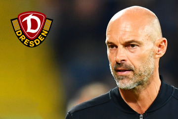 """Dynamo-Trainer Schmidt ist von Stadt, Stadion und Fans beeindruckt: """"Ich genieße das"""""""