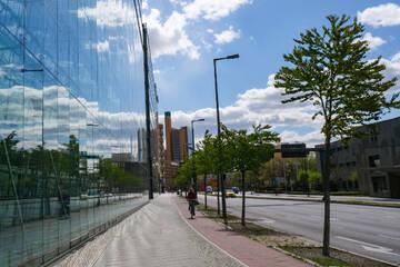 Klimawandel verändert Berliner Straßenbild: Baum der Zukunft muss Hitze aushalten