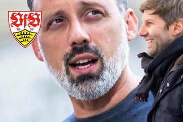 """VfB-Coach Matarazzo zum Hitzlsperger-Abschied: """"Ich bin nicht happy"""""""