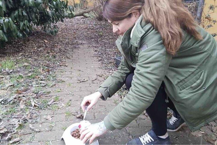 Annett Wölfer (40) kümmert sich liebevoll um die zurückgelassenen Katzen.