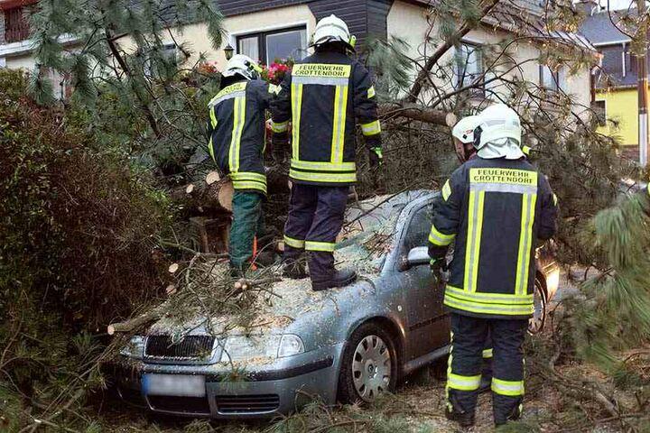 Aufräumarbeiten nach Sturmtief Herwart, der im Oktober vor allem in Nord- und Ostdeutschland wütete.