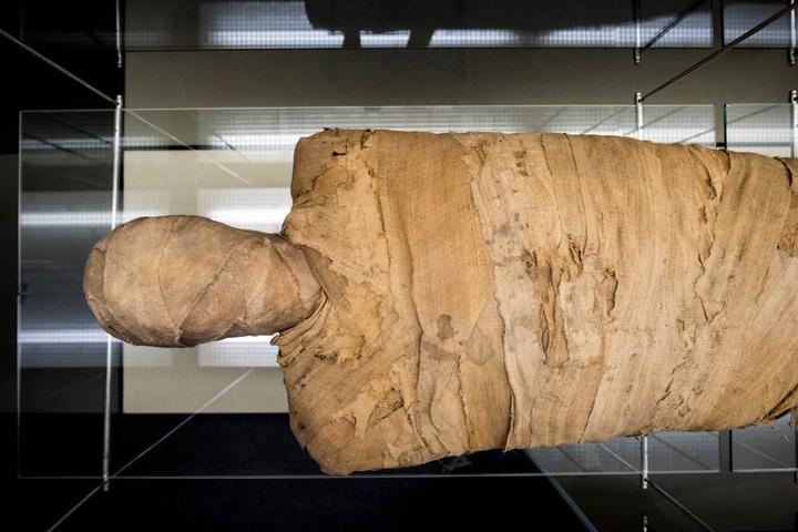 Nach 38 Jahren im Keller wurde die Mumie aufwendig restauriert.