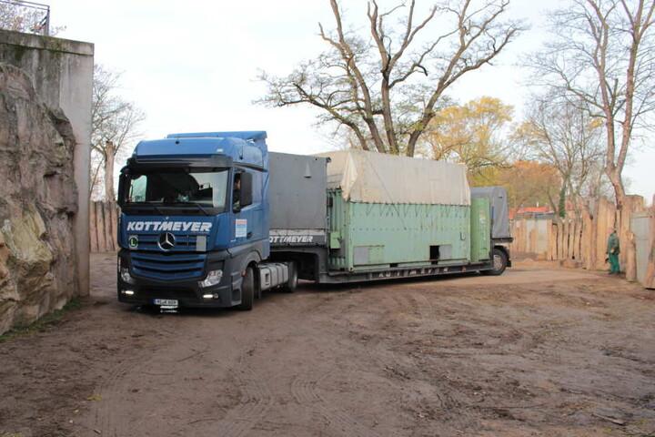Mit einem auf Elefanten und anderen Großtieren spezialisierten Transportunternehmen ging es für Bibi auf die Reise nach Hodenhagen.