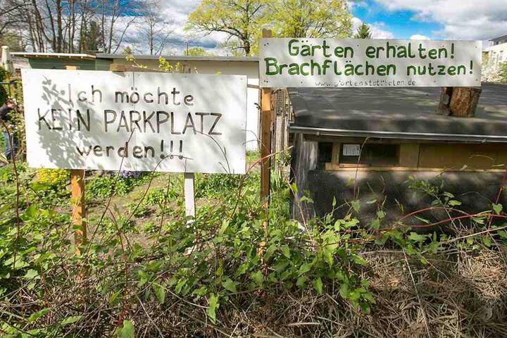 Die Kleingärten an der Pfotenhauerstraße sind mittlerweile weg, sie mussten einem Parkhaus weichen.