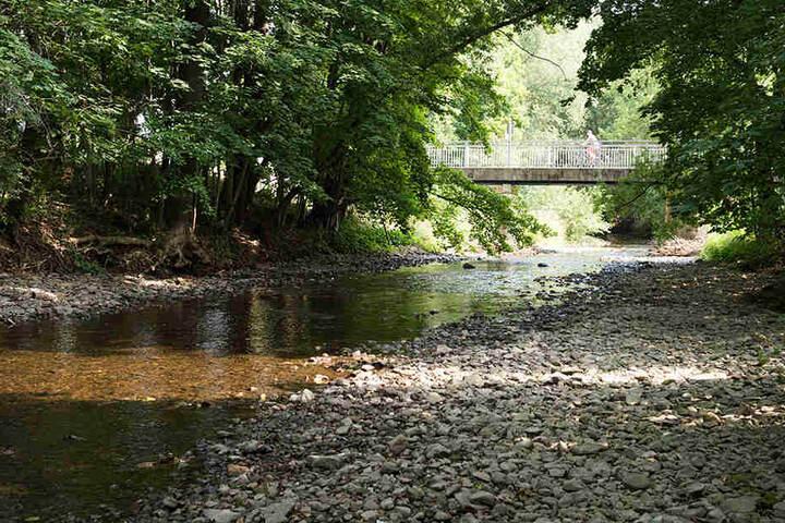 Es führen vor allem Flüsse und Bäche in Nord-, Mittel- und teilweise Ostthüringen wenig Wasser.