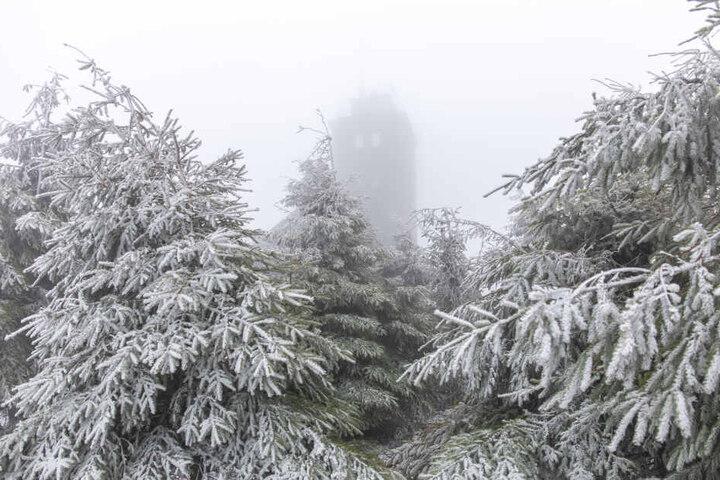 Schnee und Nebel, so sieht der Muttertag im Erzgebirge aus.