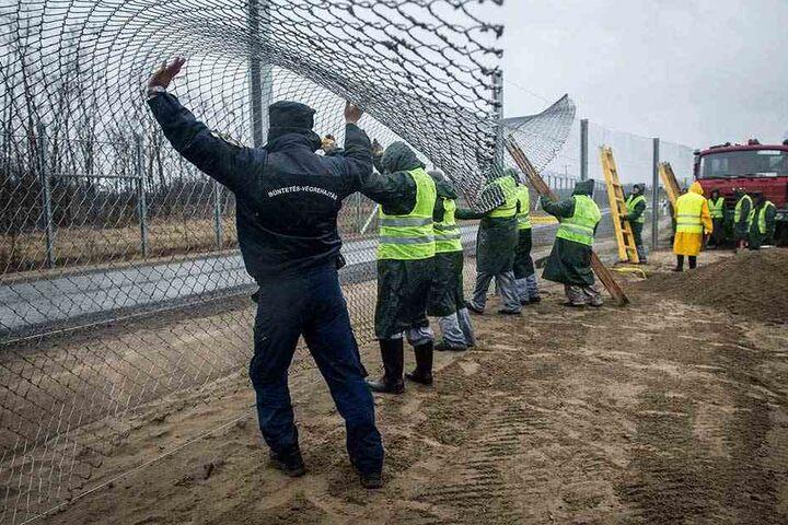 Strafgefangene und Aufseher verstärken den Grenzzaun zwischen Ungarn und Serbien (Archivbild).