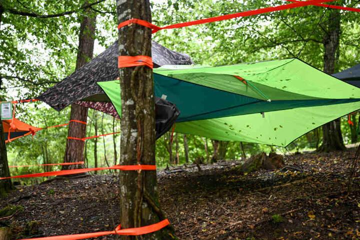 Mehrere Zelte sind zwischen den Bäumen bei der Survival- und Outdoormesse gespannt.