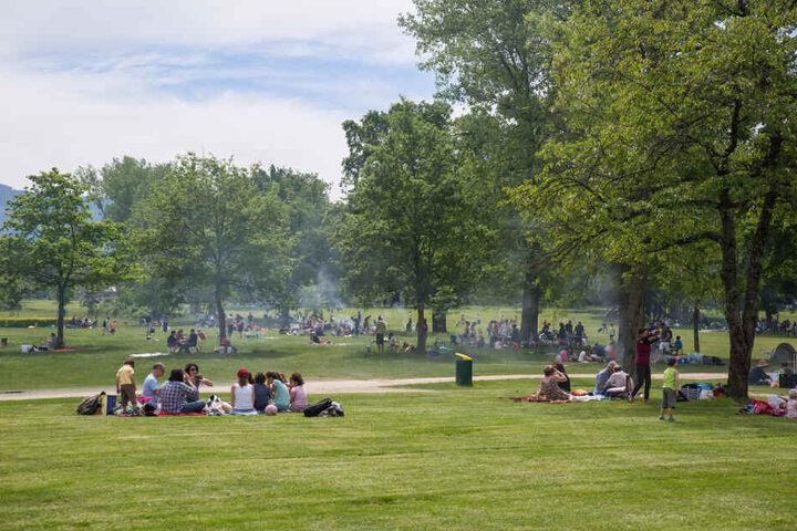 Grillen und Chillen im Park.