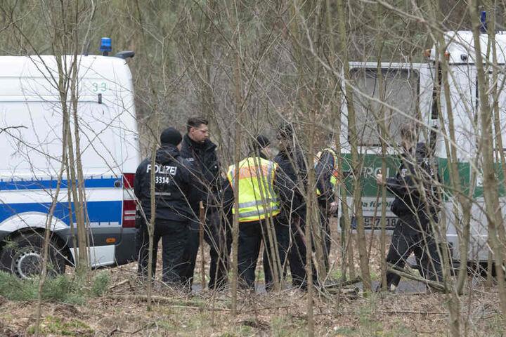 Drei Tage lang durchkämmte die Polizei ein Waldstück auf der Suche nach einer Leiche.