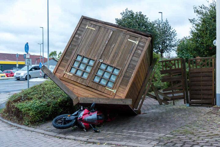 Orkanartige Böen richteten am späten Nachmittag und in den Abendstunden des Sonntags zahlreiche Schäden im Kreis Mainz-Bingen an.