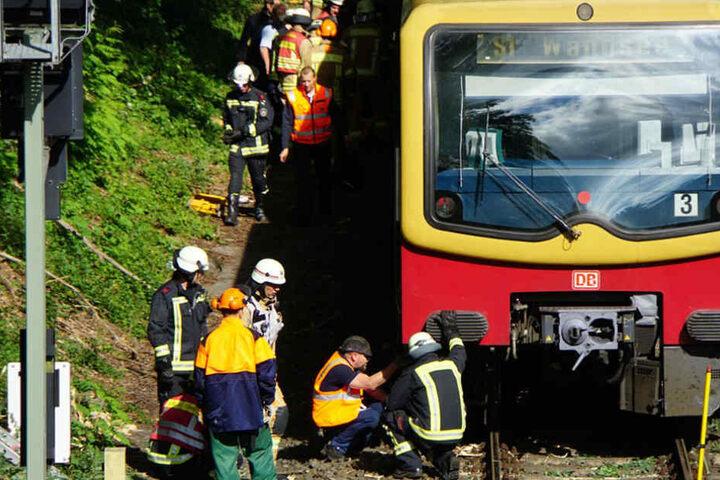 Einsatzkräfte der Bundespolizei und der Feuerwehr waren vor Ort, um den Baum von den Gleisen zu entfernen.