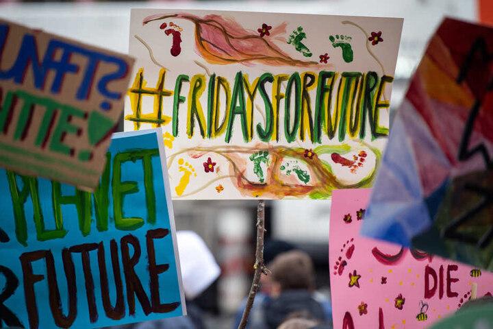 """Unter dem Motto """"Fridays for Future"""" schwänzen Schüler den Unterricht, um für den Klimaschutz zu demonstrieren. (Archivbild)"""
