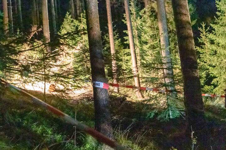 In einem Waldstück an der Waschleithner Straße in Schwarzbach wurde ein toter Mann gefunden.