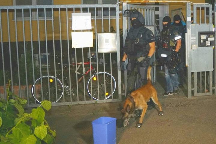 SEK-Beamte und ein Hund verlassen das Grundstück.