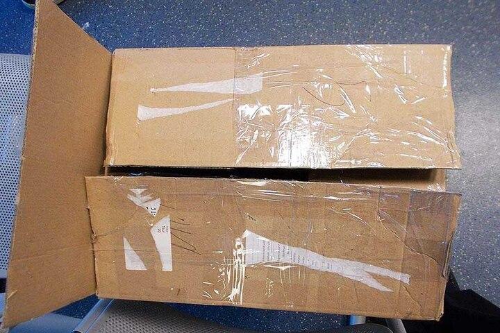 In diesem Karton wurden die beiden Katzenbabys gefunden.