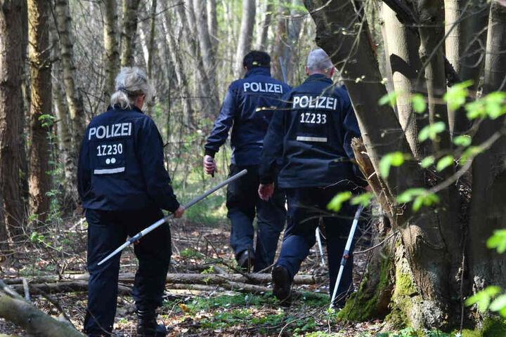 Polizeibeamte suchen in einem Waldgebiet bei Brieselang nach Spuren der vermissten Georgine Krüger.