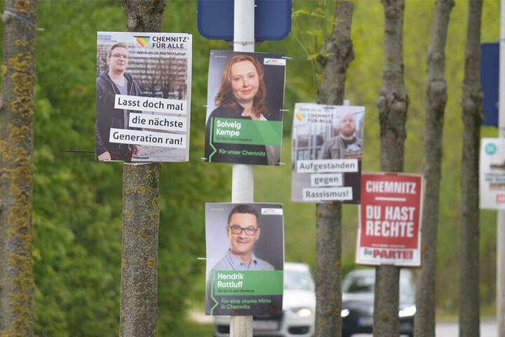An mehreren Orten in Chemnitz, wie hier an der Neefestraße, werden Bäume mit Wahlwerbung plakatiert.