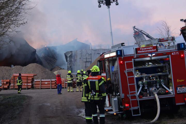 Die Lagerhalle brannte vollständig nieder.