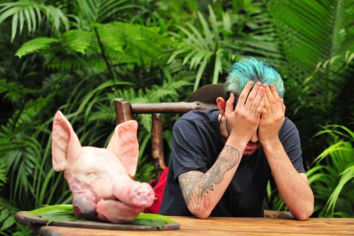 Ein ganzer Schweinekopf wird vor ihn gestellt. Daniele muss die Schweinsnase in zweieinhalb Minuten essen.