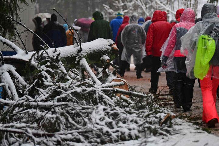 Auch beim Biathlon-Weltcup in Oberhof müssten von der Schneelast erdrückte Bäume gefällt werden.