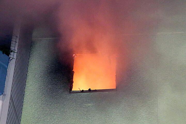 Durch das Feuer wurde nicht nur die Brandwohnung stark beschädigt, sondern auch die Nachbarwohnungen.
