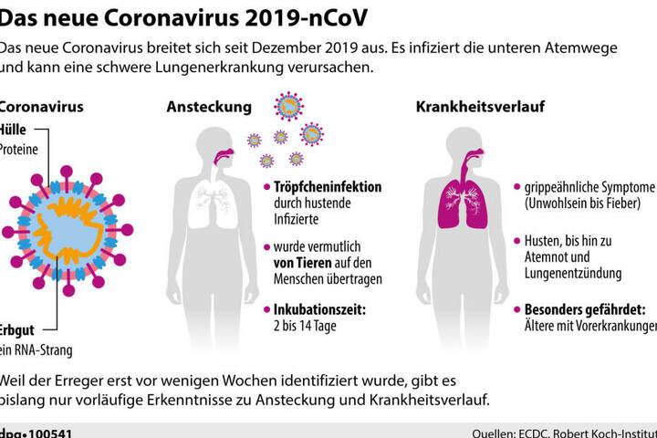 Das neue Coronavirus 2019-nCoV.