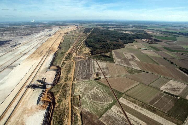 Die Reste des Hambacher Forstes und der Tagebau aus der Luft.