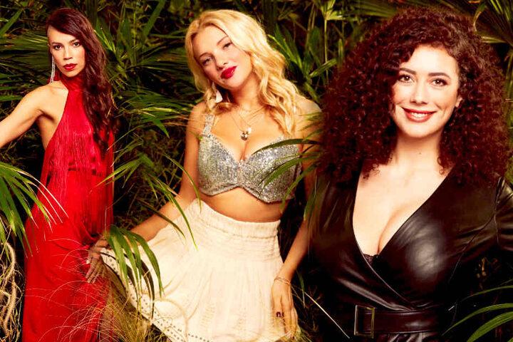Giselle Oppermann (30), Evelyn Burdecki (30), Leila Lowfire (25) und Co. ziehen nicht für den Playboy blank.