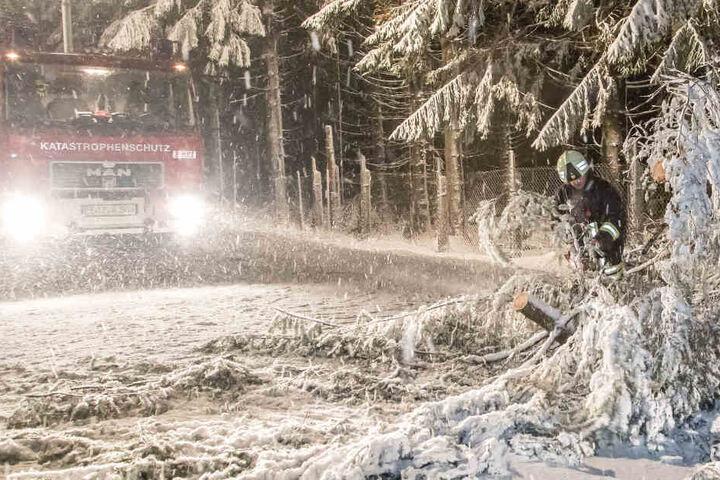 Erste Bäume halten das Gewicht nicht mehr Stand und kippen um. Zwischen Kretscham-Rothensehma und Hammerunterwiesental entwurzelte der schwere Schnee einen Baum.