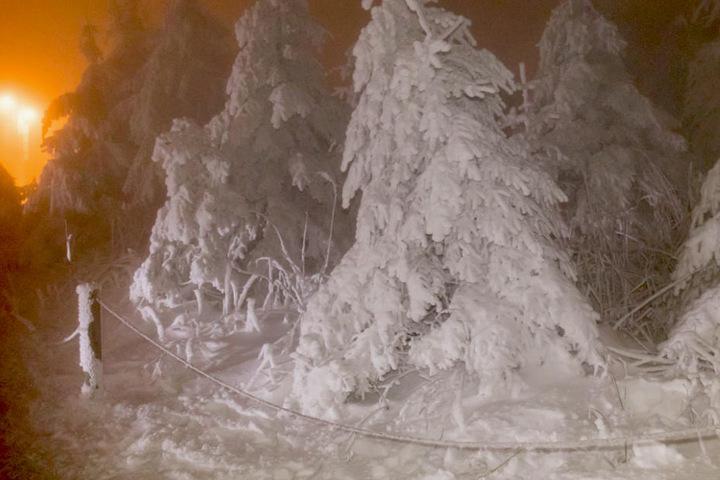 Der Frost hat die Landschaft in ein Wintermärchen verwandelt.