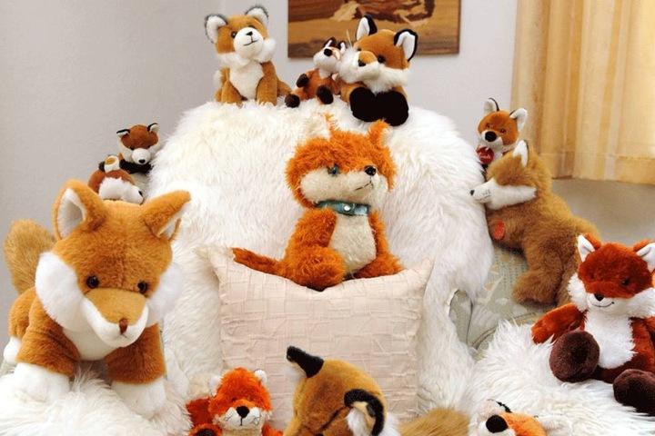 Die Palette der Fuchs-Exemplare ist groß, das Haus des Rentners vollgepackt mit Exponaten.