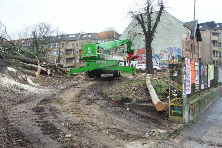 Schon seit Tagen sind die Arbeiter dabei, die Grünfläche brach zu legen.