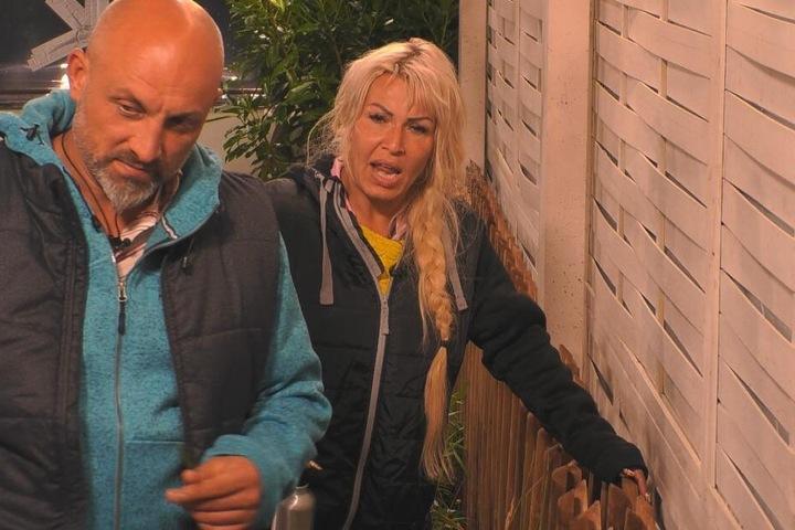 Zlatko und Ginger sagen Joey durch den Zaun die Meinung.