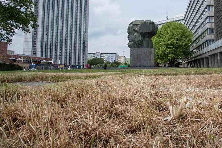 Kein schöner Anblick: Die Wiese am Nischel sollte bepflanzt werden. Der Stadtrat lehnte ab.